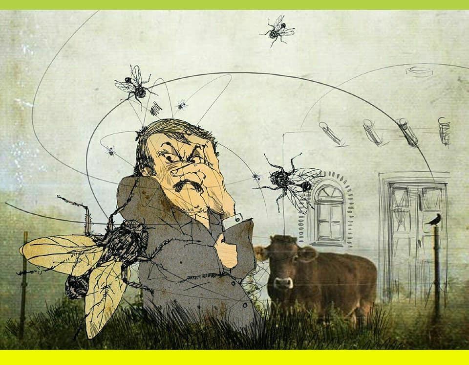 شرایط بد ناشی از فضولات حیوانی و مگس ها در خانه های بومگردی